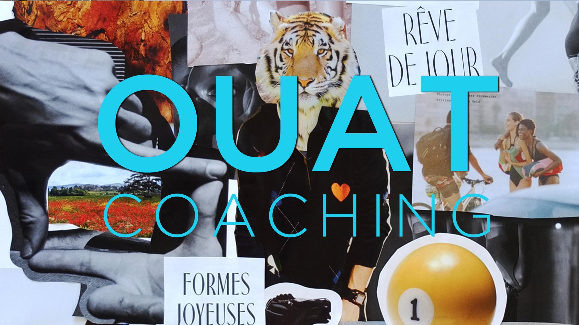 carton_video_ouat_coach_labo